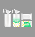 realistic wet wipes packaging mockup set vector image