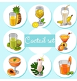 Set of different cocktails with fruits vector image vector image