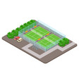 tennis club playgrounds with parking isometric vector image