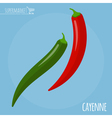 Cayenne icon vector image