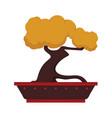 custom penjing trees graphic vector image