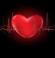 heart and cardiograph vector image