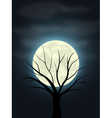 Moonlight vector image