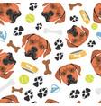 smiling dog rhodesian ridgeback vector image vector image