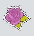 violet rose with green leaves cut it out patch vector image vector image