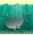 a whale in the sea vector image vector image