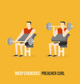 bicep exercises preacher curl vector image