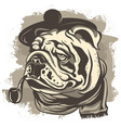 drawing of a bulldog detective wearing a cap and vector image vector image