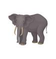 flat portrait of adult elephant wild vector image vector image