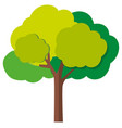 green tree with branches vector image vector image