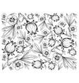 hand drawn of hibiscus sabdariffa or roselle backg vector image vector image