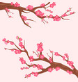 japan cherry branch with vector image vector image
