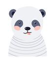 panda cute animal baby face vector image