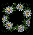 passiflora round frame vector image vector image