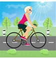 friendly young girl riding bicycle happy vector image