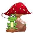 A frog catching a fly near the giant mushroom vector image vector image