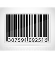 barcode 02 vector image vector image