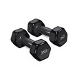 black dumbbells for fitness vector image vector image
