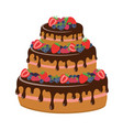 cake with chocolate and berries vector image