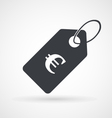Icon of price tag with euro sign vector image vector image