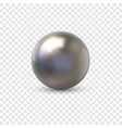 metal sphere realistic 3d ball from steel or vector image
