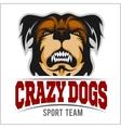 Modern professional logo for sport team Bulldog vector image vector image