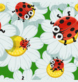seamless background with daisies and baby vector image vector image