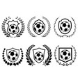 soccer shield with laurel wreath icons set vector image