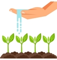 watering plants from hand Image vector image