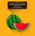 Watermelon summer fruit vector image vector image