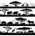 wild african life background silhouettes vector image vector image