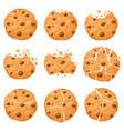 broken oatmeal cookies cartoon bitten choco chip vector image
