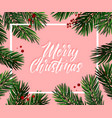 christmas tree fir greeting card great for vector image