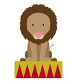 isolated circus lion vector image vector image