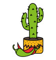 mexican cactu plant with chilli peppers vector image vector image