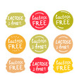 set round green labels with text lactose free vector image vector image