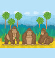 three gorillas in jungle vector image