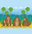 three gorillas in jungle vector image