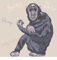 funny serious monkey Chimpanzee vector image vector image