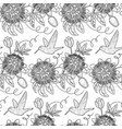 hummingbird and passiflora seamless pattern vector image vector image