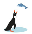 penguin and fish vector image vector image