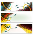brochures set with feathers vector image vector image