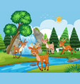 deers in outdoor scene vector image vector image