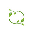 ecology leaves symbol logo vector image