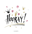 Hooray - modern calligraphy text handwritten with vector image vector image
