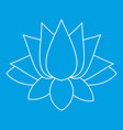 lotus icon outline style vector image vector image