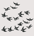 swallow flocks silhouette set vector image
