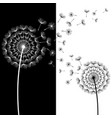 abstract wallpaper with black and white dandelion vector image vector image