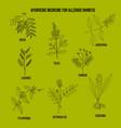 best ayurvedic herbs for allergic rhinitis vector image vector image
