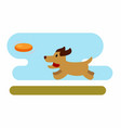 dog playing with frisbee vector image